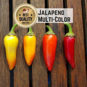 Jalapeño Multi-Color Chilisamen