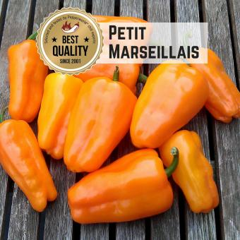 Petit Marseillais Chilisamen