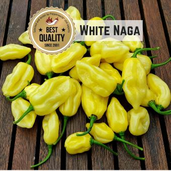 White Naga Chilisamen
