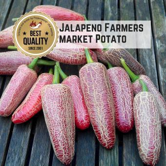 Jalapeño Farmers Market Potato Chilisamen
