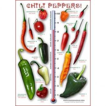 Das Chili Pepper Poster