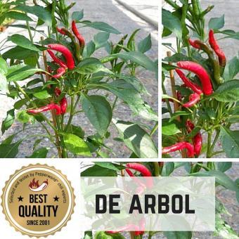 De Arbol Chilipflanze