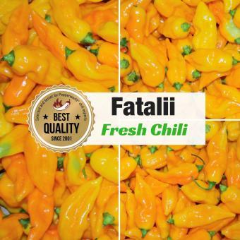 Frische Chili Fatalii, 200g