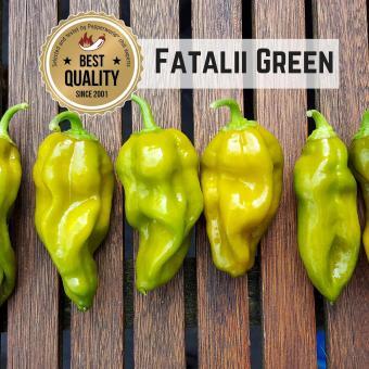 Fatalii Green Chilisamen