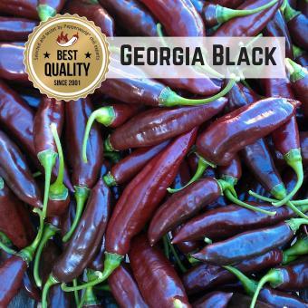 Georgia Black Chilisamen
