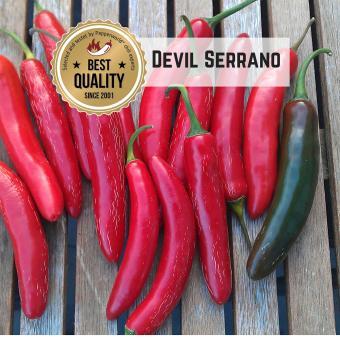 Devil Serrano Chilisamen