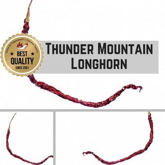 Thunder Mountain Longhorn Chilipflanze