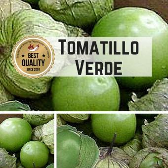 Tomatillo Verde (Physalis ixocarpa) Samen