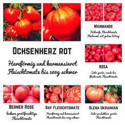 Bio Saat Sortiment Fleischtomate- 5 unterschiedliche Sorten inklusive einer extra Berner Rose-Tomate