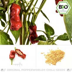 BIO Peter Pepper Red Chilisamen