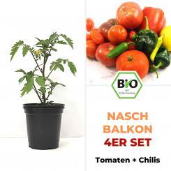 Nasch-Balkon 4er Set - BIO Pflanzen