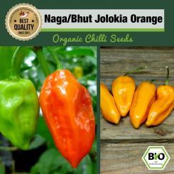 BIO Naga/Bhut Jolokia Orange Chilisamen