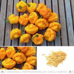 Scotch Bonnet Foodarama Yellow Chilli Seeds