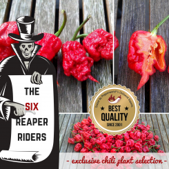 THE SIX REAPER RIDERS ORGANIC Plants-Power-Pack