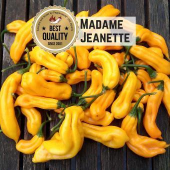 Madame Jeanette Chilisamen