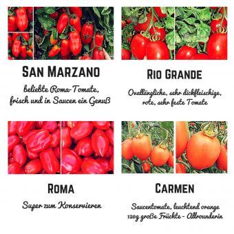Bio Saat Sortiment- San Marzano Saucentomaten Samen Set