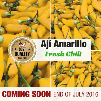 Frische Chili Ají Amarillo, 350g