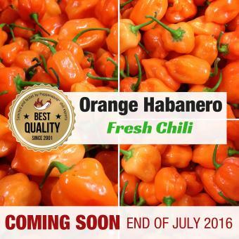 Frische Chili Orange Habanero, 200g
