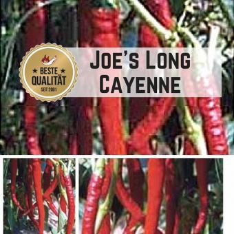 Joe´s Long Cayenne Chilisamen