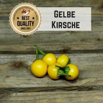 Gelbe Kirsche BIO Chilipflanze
