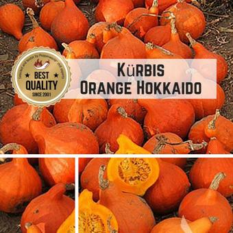 Orange Hokkaido (Kürbis) Samen