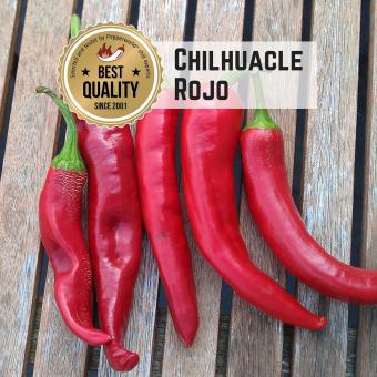 Chilhuacle Rojo Chilisamen