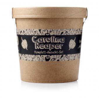 Spicy Garden Carolina Reaper