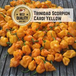 Trinidad Scorpion Cardi Yellow Chilisamen