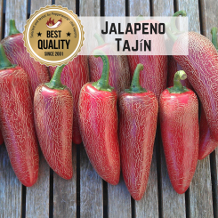 Jalapeno Tajin Chilli Seeds