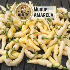 Murupi Amarela Chilli Seeds