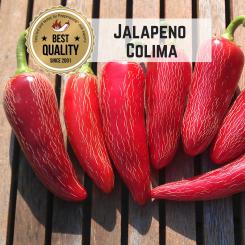 Jalapeño Colima Chilisamen