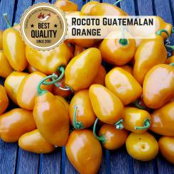 Rocoto Guatemalan Orange Chilisamen