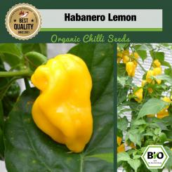 Organic Habanero Lemon Chilli Seeds