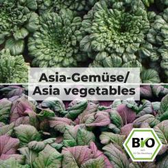 Asia vegetables - Vegetable seed set