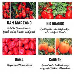 Organic seed variety - San Marzano sauce tomatoes seed set