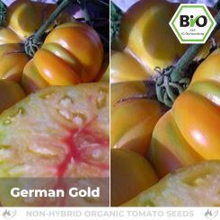 Organic German Gold Tomato Seed (meaty Tomato)