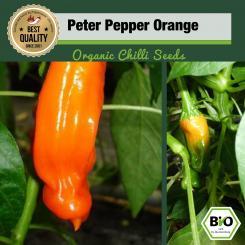 Bio Peter Pepper Orange Chilisamen
