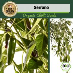 Serrano Chilli Seeds