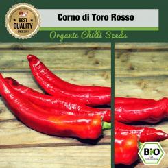 Organic Corno di Toro Rosso Seeds