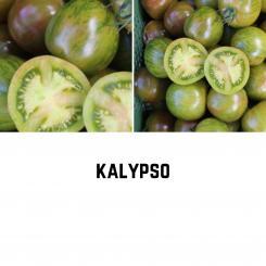 BIO Kalypso Tomatensamen (Salattomate)