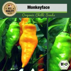 Organic Monkeyface Chilli Seeds