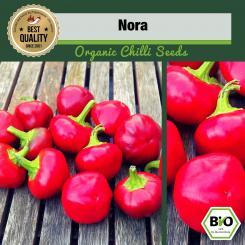 Organic Ñora Chilli Seeds