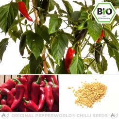 Organic Piment d'Espelette Organic Chilli Seeds