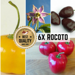 ROCOTO RARITIES Organic Plants-Power-Pack