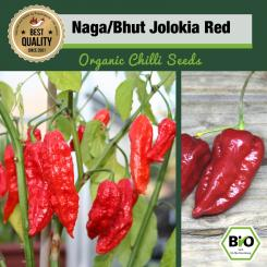Organic Naga/Bhut Jolokia Red Chilli Seeds