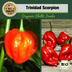 Organic Trinidad Scorpion Chilli Seeds