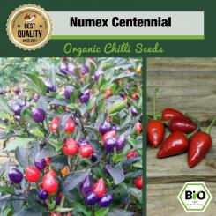 BIO NuMex Centennial Chilisamen - First Try Then Buy