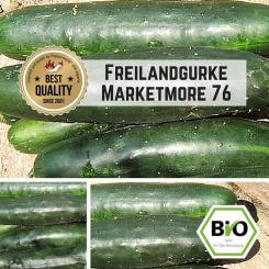 Freilandgurke Marketmore 76 Samen