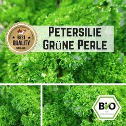 Petersilie (Grüne Perle) Samen