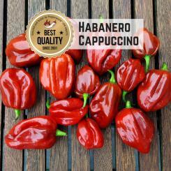 Habanero Cappuccino Chilli  Seeds